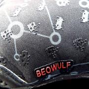 BEOWULF 7